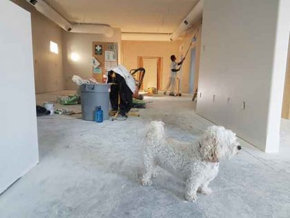 Things Every Homeowner should Keep in Mind While Planning a Renovation